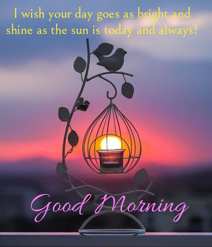 Lamp hanging, Good morning best quotes.