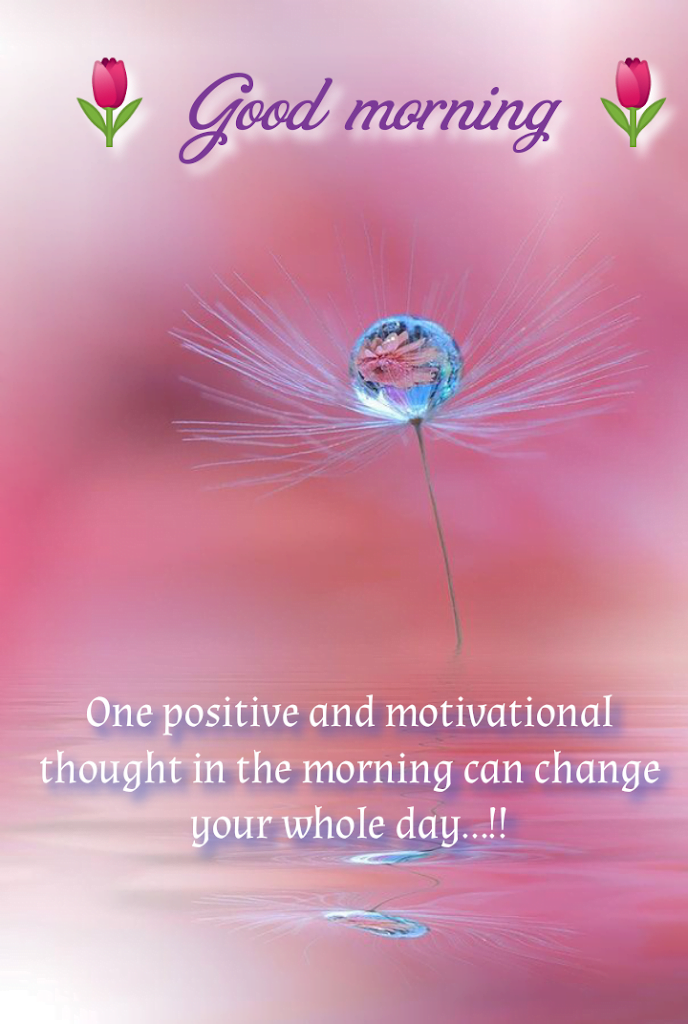 Imaginary flower with reflection, Good morning best quotes.